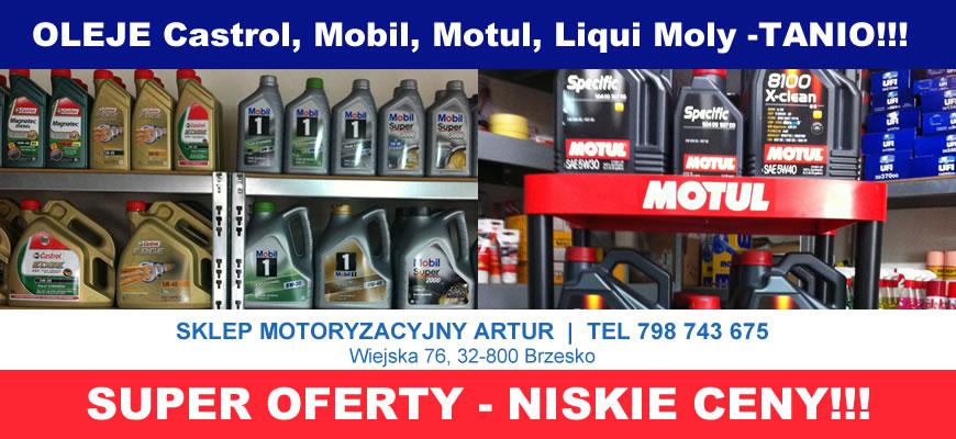 Oleje Silnikowe i Filtry Brzesko